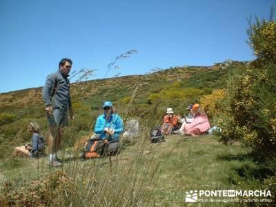 Ruta Lago de Sanabria - rutas senderismo; senderismo cerca de madrid